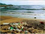 Macro déchets